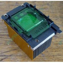 Радиатор HP p/n 279680-001 (socket 603/604) - Ковров