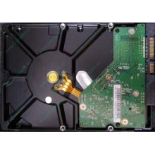 Б/У жёсткий диск 1Tb Western Digital WD10EVVS Green (WD AV-GP 1000 GB) 5400 rpm SATA (Ковров)