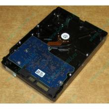 HDD 500Gb Hitachi HDS721050DLE630 донор на запчасти (Ковров)